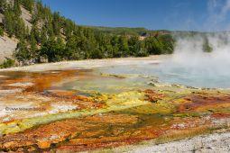 Geysirfelder-im-Yellowstone-NP-7
