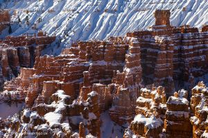 Red_Canyon-Bryce-Toadstool-Hoodoos