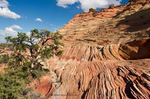 Coyote-Buttes-South-2